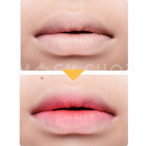 The Saem Cover Perfection Lip Concealer. Фото №2